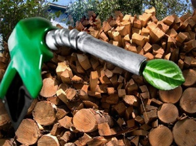 Технологический прорыв по получению биотоплива | uniclima.ru